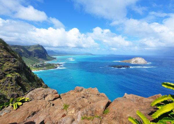 MAKAPU'U RIDGE - Oahu Blue